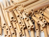 Nature Bamboo Straw Replace Paper Straws & Wheat Straw - NBBSRPPWS